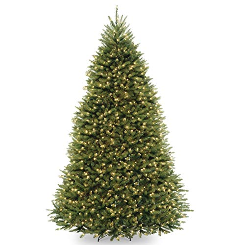 National Tree Company Pre-lit Artificial Christmas Tree | Includes Pre-strung Multi-Color LED Lights and Stand | Dunhill Fir - 10 ft