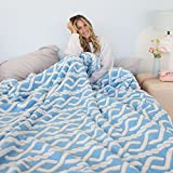Ailemei Sherpa Fleece Throw Blanket with Braided Knit Pattern, Reversible Fuzzy Plush Soft Fluffy Bed Blankets for Winter, Throw Thermal Blankets for Couch, Sofa, Light Blue