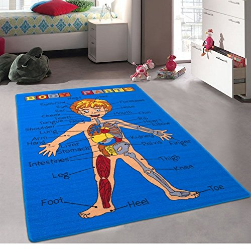 CR'S 8FTX11FT KIDS EDUCATIONAL/PLAYTIME RUG 7FT.4INX10FT.4IN PLEASE CHECK ALL PICTURES (BODY PARTS)