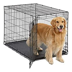 Best Dog Crate for Large Dogs 2019