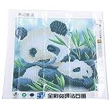 Ctzrzyt DIY 5D Diamond Painting Bordado Dos Panda Embrace Cross Stitch Tool Set Tool Tool DecoracióN