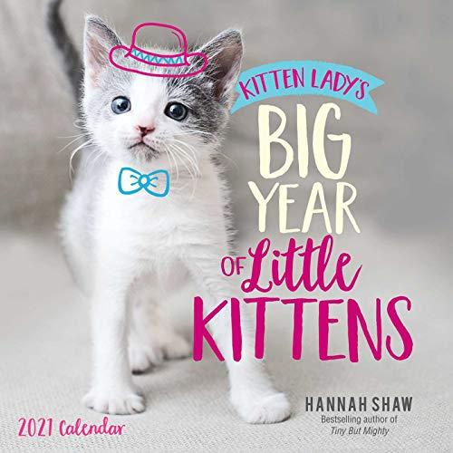 Kitten Lady's Big Year of Little Kittens 2021 Wall Calendar
