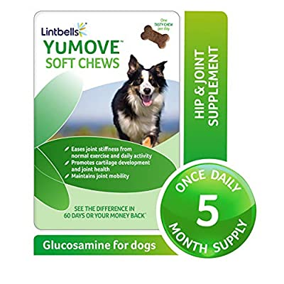 Lintbells YuMOVE Joint Supplement Medium Dog Chews 150 Count - Contains Glucosamine, Green Lipped Mussel - Natural Relief from Hip Ache, Stiff Joints - 5 Month's Supply