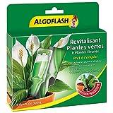 ALGOFLASH Monodose Revitalisante Plantes Vertes & Plantes Fleuries, Une dose pour une cure de 4 semaines, 30 ml, MONOPAV