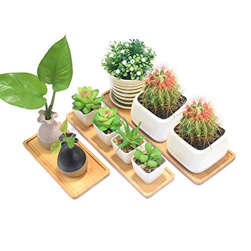 Pflanzen-Untersetzer, Mini-Rechteckiges Bambus-Tablett, Drainagetopf-Untersetzer, rechteckiges Holz-Tablett, Sukkulenten-Pflanz-Tablett, Bonsai-Blumenkästen, Gesamtgröße 30,5 x 10,2 x 1 cm.