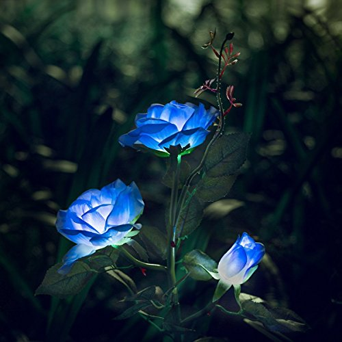 XLUX Outdoor Solar Powered Rose Lights Flower Stake, for Garden Patio Yard Christmas Pathway Decoration, Blue