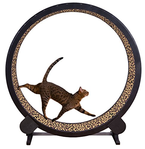 ONE FAST CAT Exercise Wheel (Leopard Print)