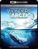 IMAX: Wonders of the Arctic [Blu-ray]