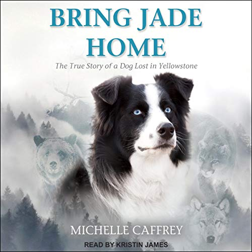 Bring Jade Home audiobook cover art