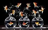 Smntt Rompecabezas 1000 Piezas Piezas Puzzle Rompecabezas Pequeños Peces de Colores en el Acuario. Juegos Infantiles Juguetes decoración Rompecabezas educativos