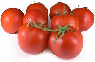 GuCra Artificial Fruit Vegetable, Tomato 8 pcs Pack, Fruit Vegetable Model
