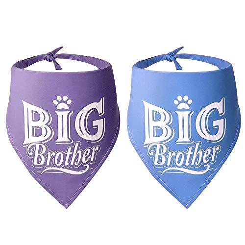 stpiater Big Brother - Bandana Triangular para Perro, Accesorios para Perros, Mascotas y Gatos