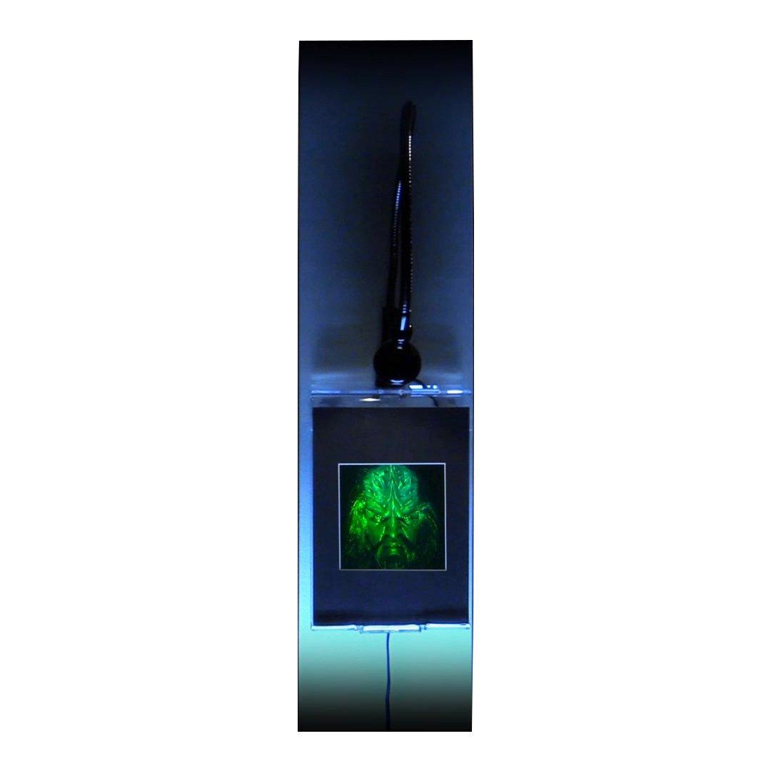 3d nave Klingon Borg holograma imagen, multicanal Coleccionable reflexión sellos película: Amazon.es: Hogar