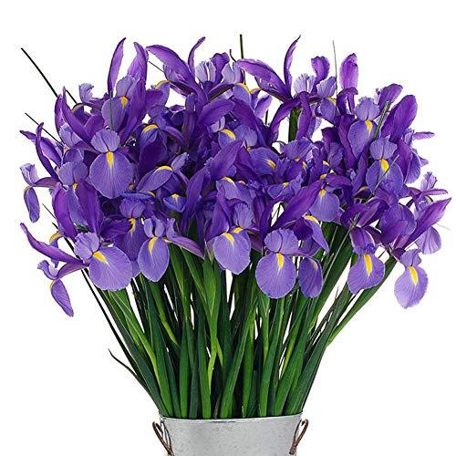 Blue Iris Seeds 30+ (Iris Sibirica) Sapphire Beauty Flower Pond Water Aquatic Semillas de la más alta calidad para el jardín de su casa Jardín al aire libre Plantación agrícola
