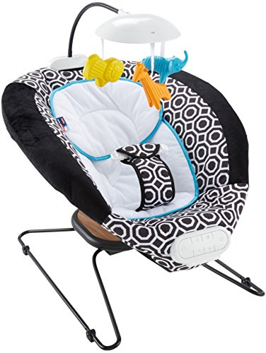 Lowest Prices! Fisher-Price Deluxe Bouncer
