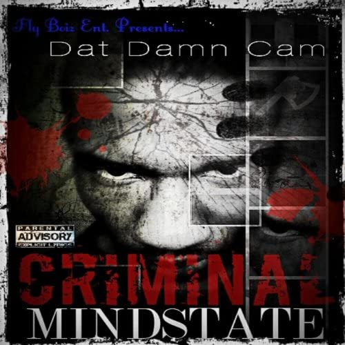 DatDamnCam