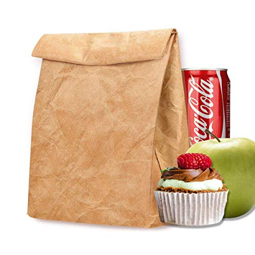 Bolsa de almuerzo ecológica, Tyvek para mujer, reutilizable, aislante, de papel marrón congelable, bolsas de aperitivos para trabajo, picnic, escuela