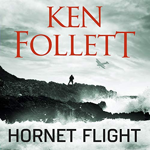 Couverture de Hornet Flight