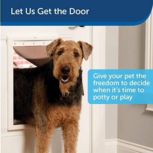 PetSafe Plastic Pet Door with Soft Tinted Flap, White, Medium