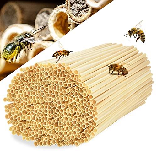 EKKONG Tubi di Nidificazione con Diametro 3-5 mm per api Selvatiche, Cannucce 100% Natural per Hotel Insetto, Casetta per Insetti, Rifugi per Insetti, Hotel di Insetti Selvatici (300PCS-20CM)