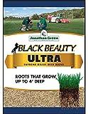 3. Jonathan Green 10323 Black Beauty Ultra Mixture, 25-Pound