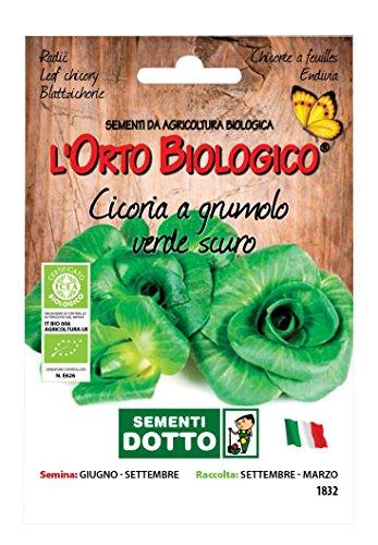 Sdd O.BIO_CICORIA GRUMOLO Verde Scuro Seme, 0.02x15.5x10.8 cm