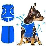 Warmiehomy Chaleco de Refrigeración para Perros pequeños y medianos, Abrigo De Enfriamiento Transpirable Al Aire Libre Anti-Calor Chaqueta Chaleco Refrescante Perro