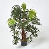 Homescapes Palmier bambou vert Palm Lady, grandes feuilles, en pot 90 cm