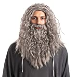 Spooktacular Creations Men's Grey Wizard Wig with Beard Halloween Wig for Adults Cosplay Party Accessories