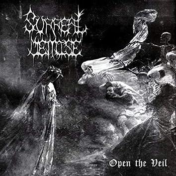 Open the Veil