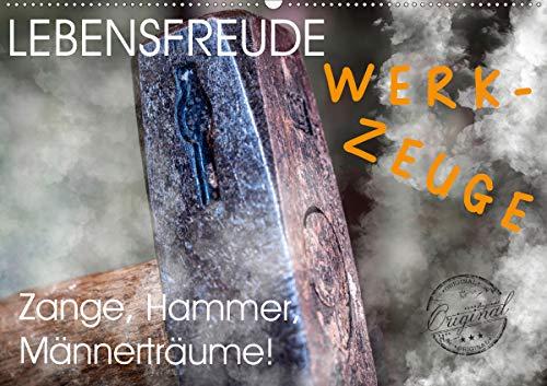 Lebensfreude Werkzeuge (Wandkalender 2020 DIN A2 quer): Wir Handwerker lieben Werkzeuge jeglicher Art. Auf zum Baumarkt Heimwerker! Hammer, Pinsel und ... 14 Seiten ) (CALVENDO Hobbys)