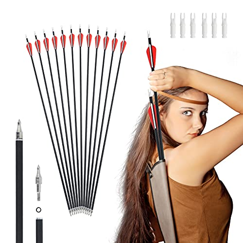 Wlien 30Inch Carbon Arrows for Compound & Recurve Bow Practice Shooting, 500 Spine with Removable Tips (Pack of 12)