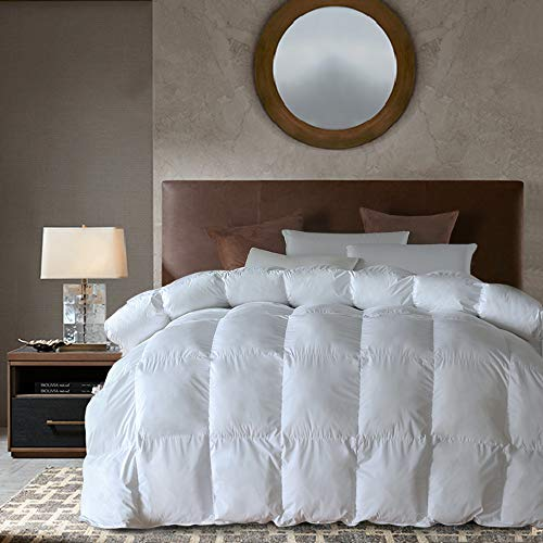 Goose Down Alternative Comforter All Season Duvet Insert(White, Queen)-Ultra Soft Double Brushed Microfiber Quilt Cover, Baffled Box Stitched with Corner Tabs