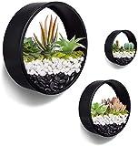 JonesHouseDeco 3 juegos de maceta redonda de pared negro maceta colgante de pared jarrón de metal suculentas macetas macetas decoración del hogar interior