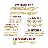 Set Adesivi Ridley Tagliati Singolarmente Stickers Compatibili Kit Decalcomanie Personalizza Colore Bici