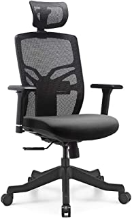 HESSEN High Back Office Chair Ergonomic with Lumbar Support Headrest and 3D Arm Rest, Adjustable Seat Depth and Back Height, Highly Adjustable Home Office Desk Chair
