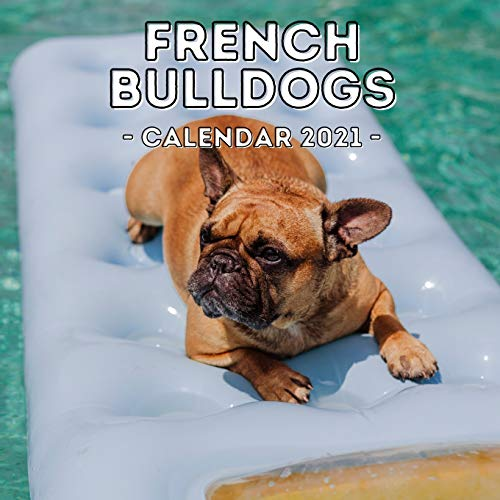 French Bulldogs: 2021 French Bulldog Wall Calendar, Cute Gift Idea For Bulldog Lovers Or Owners Men And Women
