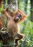 Tierisch cool! 2020 - Bildkalender - Humor-Kalender (24 x 34) - mit Sprüchen - Tierkalender - Wandkalender