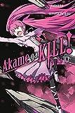 Akame ga KILL!, Vol. 10 (Akame ga KILL!, 10)