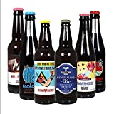 Hops & Shots Discover Craft Beer Introductory Mixed Bottles and Cans 6 Case Ideal Gift