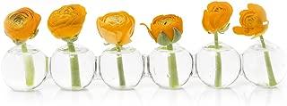 Caterpillar, Clear Glass Bud Vase 10.25