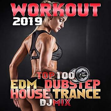 Workout 2019 Top 100 EDM Dubstep House Trance DJ Mix