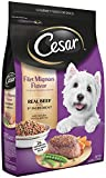 CESAR Filet Mignon Flavor With Spring Vegetables Dry Small Breed Dog Food 12 Pounds