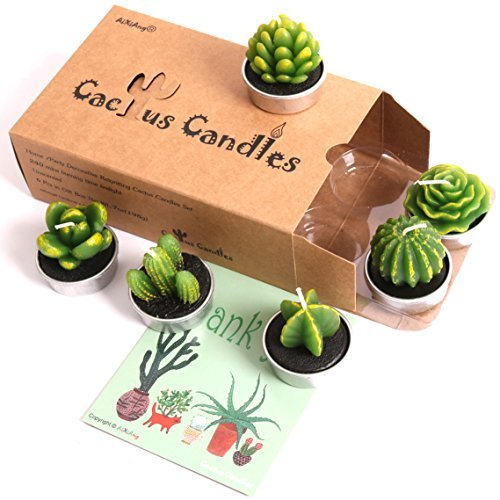 AIXIANG 6 Styles Cactus Tealights Candle Delicate Succulent Tealight Candles for Home Decor New Year Presents, Housewarming Gifts, Housewarming Favors for Guests, Christmas Decorations (6 Pcs)