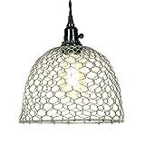 Primitive Chicken Wire Dome Pendant Light in Barn Roof Finish