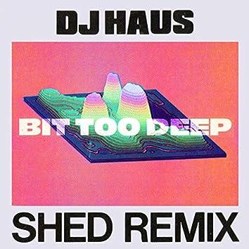 Bit Too Deep (Shed Remix)