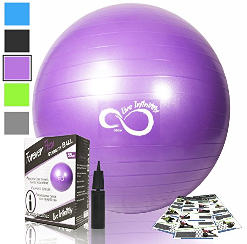 Exercise Ball -Professional Grade Exercise Equipment Anti Burst Tested with Hand Pump- Supports 2200lbs- Includes Workout Guide Access- 55cm/65cm/75cm/85cm Balance Balls (Purple, 65 cm)
