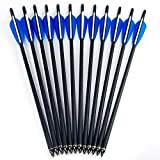 GPP Hunting Archery Carbon Arrow 20' Crossbow Bolts Arrow with 4' vanes and Replaced Arrowhead/Tip 12PC