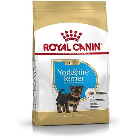ultima Comida para Perro Yorkshire - 1500 gr: Amazon.es ...