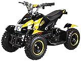Actionbikes Motors Mini Kinder Elektro Quad ATV Cobra 800 Watt 36 V Pocket Quad - Original Saftey Touch - Kinder E Bike (Schwarz/Gelb)